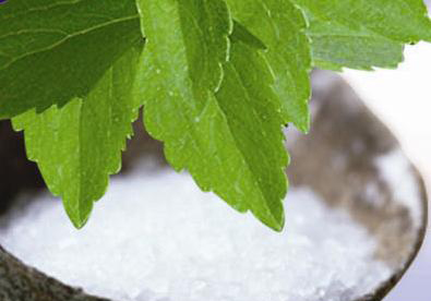 Stevia Powder (closeup)