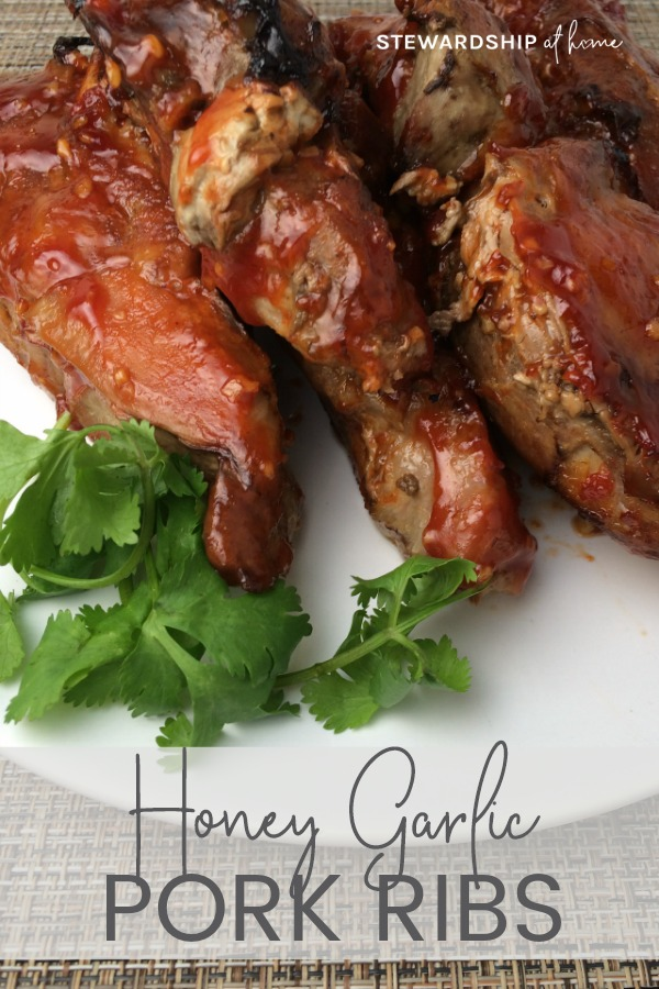 Honey and Garlic Pork Ribs Recipe ~ StewardshipAtHome.com
