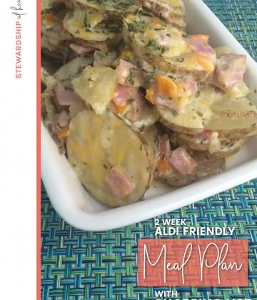 two week aldi friendly meal plan
