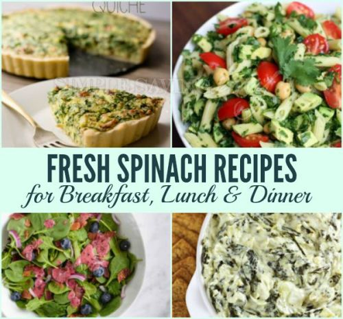 Fresh Spinach Recipes for Breakfast, Lunch and Dinner