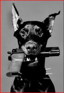 Gun_Dog