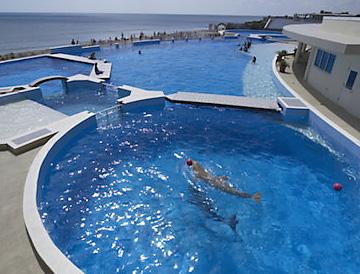 Marineland Dolphin Adventure complex