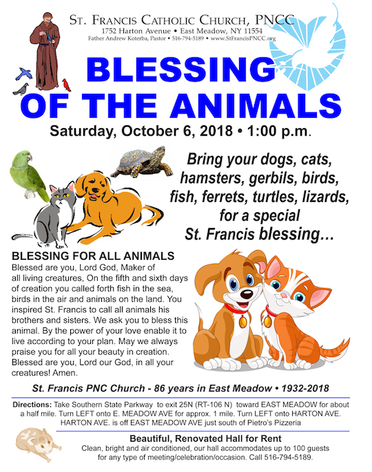 Prayer   St  Francis PNCC