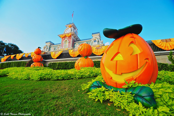 Happy Jack O'Lanterns greet guests before a Mickey's Not So Scary Halloween Party at the Magic Kingdom in Walt Disney World.