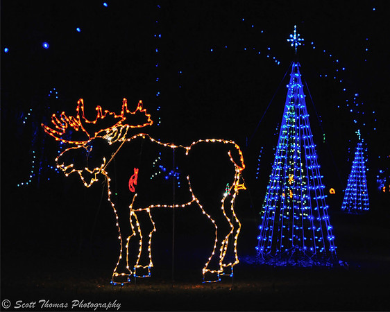A moose in the Fantasy Forest portion of the Lights on the Lake holiday display.
