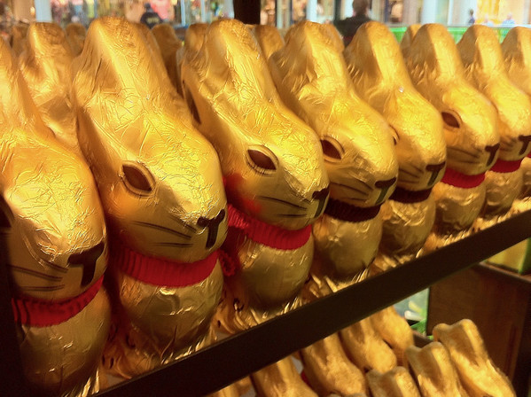 Golden chocolate bunnies