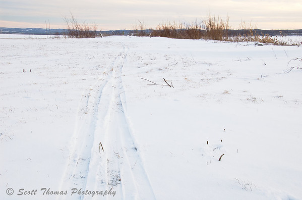 Ski Trail.  A cross country skier's trail near the shore of Onondaga Lake on a cold January day.