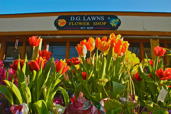 A flower display in front of a lawn and flower shop in the Village of Liverpool, New York.