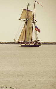 The tall ship, Lynx, under sail.