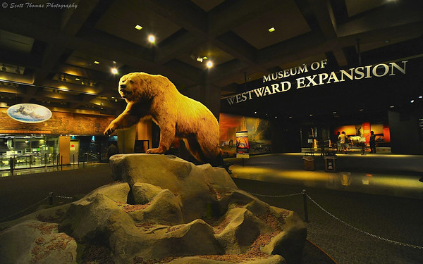 A grizzly bear welcomes you to the Museum of Westward Expansion below the Gateway Arch in the Jefferson National Expansion Memorial in St. Louis, Missouri.