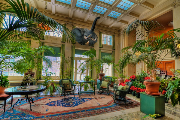 Conservatory room of the George Eastman House in Rochester, New York (see text for more information).