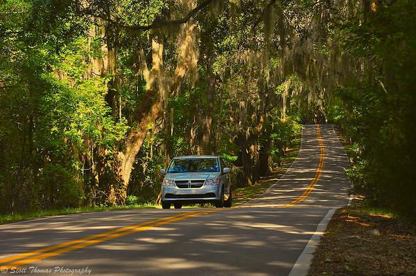 A Dodge minivan driving down a canopy road near Tallahassee, Florida.