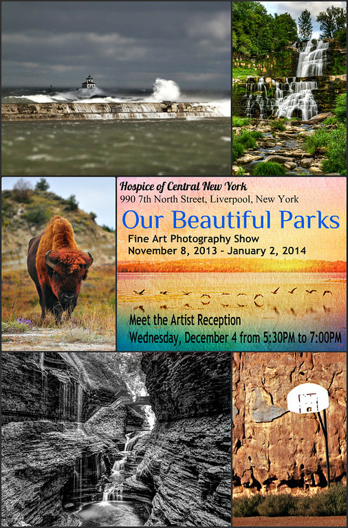 Our Beautiful Parks is the theme for this year's Hospice of CNY Fine Art Photography Show.