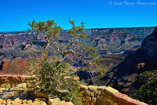 The view from the Lower Terrace of the Lookout Studio in Grand Canyon National Park