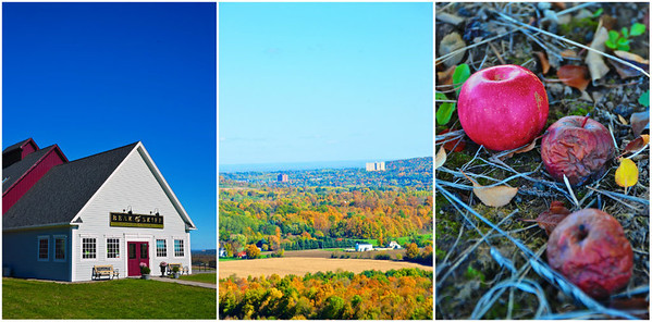 Beak & Skiff Distillery on Route 20 near LaFayette, New York.