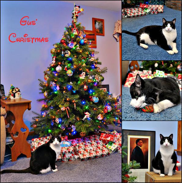 Gus's Christmas