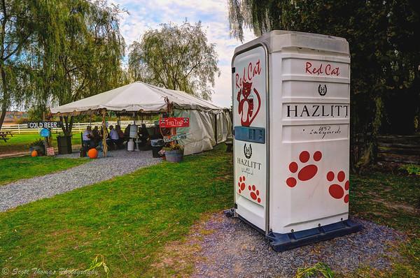 The Tiki Tent at the Hazlitt Vineyards on Seneca Lake in the Finger Lakes region of New York.