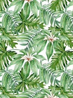 Papel de Parede Adesivo Floral Folhagem