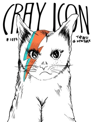 Placa Decorativa Bowie Cat
