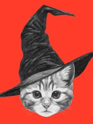Placa Decorativa Gato Hipster