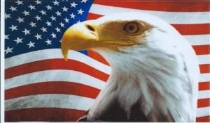 Eagle American Flag Sticker