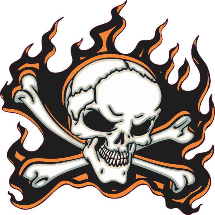 orange flame skull bumper sticker