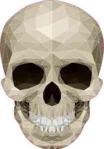 mosaic skull bumper sticker