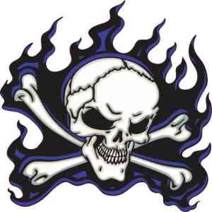 blue flame skull bumper sticker