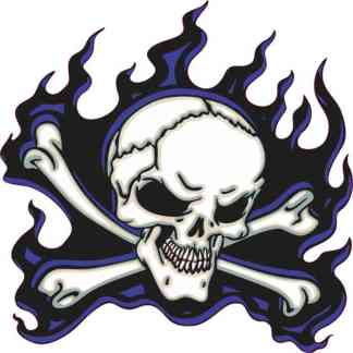 blue flame skull bumper sticker