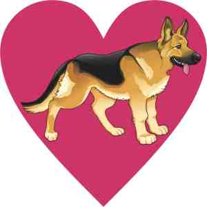 german shepherd heart bumper sticker