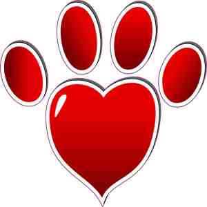 Red Heart Paw Print Bumper Sticker