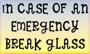 In Case of an Emergency Break Glass Magnet
