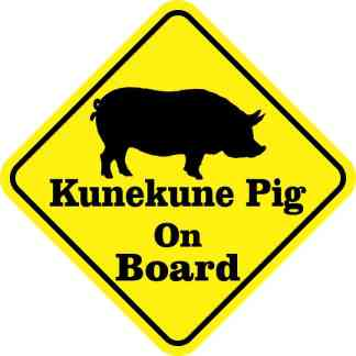 Kunekune Pig On Board Sticker