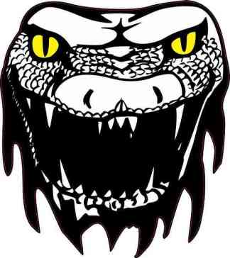 Yellow Eyes Snake Head Sticker