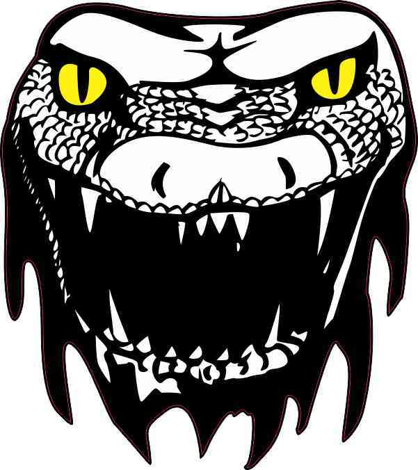 Yellow Eyes Snake Head Sticker