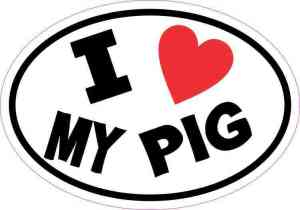 I Love My Pig Sticker
