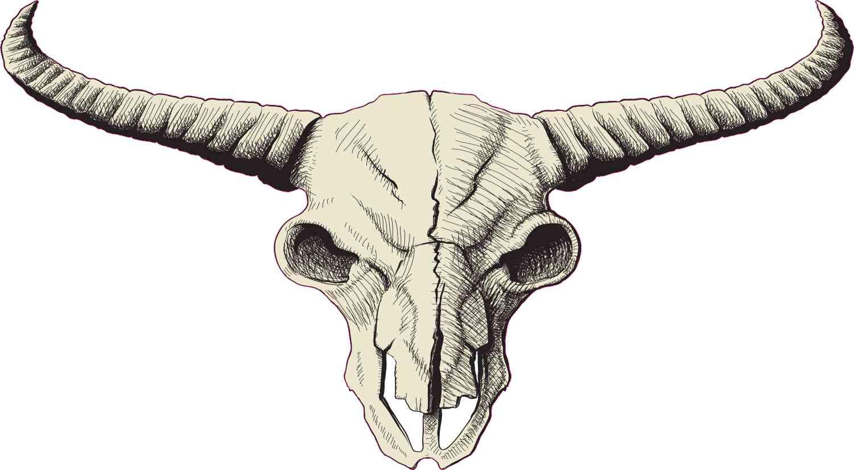 Buffalo Skull Sticker