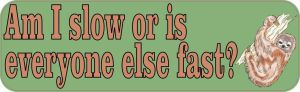 Am I Slow Or Is Everyone Else Fast Bumper Sticker