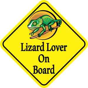 Lizard Lover On Board Magnet