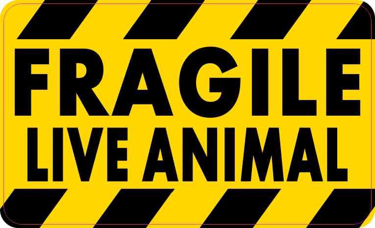 Fragile Live Animal Sticker