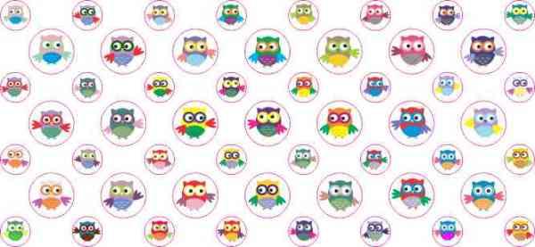 Owl Camera Dots®