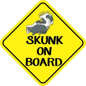 Skunk On Board Magnet