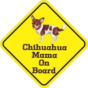 Chihuahua Mama On Board Sticker