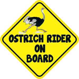 Ostrich Rider On Board Sticker