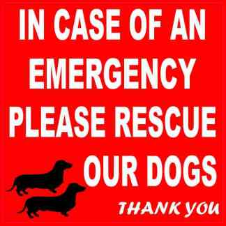 Dachshund Please Rescue Our Dogs Sticker