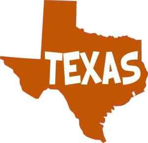 Orange and White Texas Sticker