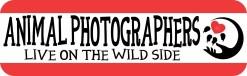 Animal Photographers Magnet