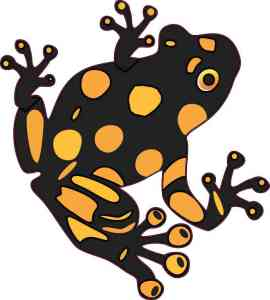 Gold and Black Dart Frog Sticker