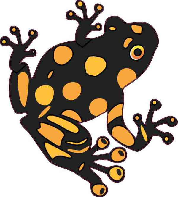 Gold and Black Dart Frog Sticker