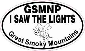 Oval GSMNP I Saw the Lights Sticker